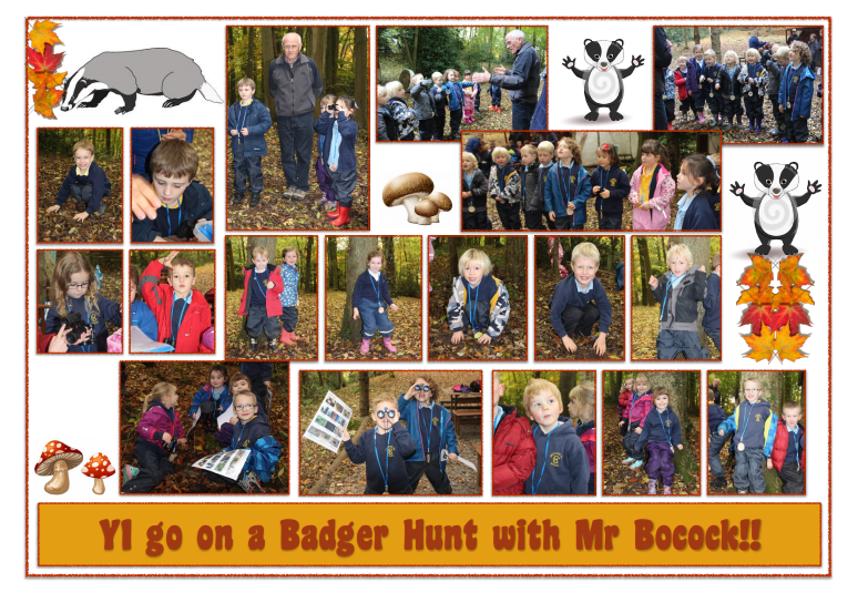 Y1 badger hunt